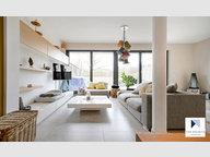 House for rent 5 bedrooms in Belvaux - Ref. 7115600