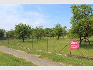 Terrain constructible à vendre à Hannonville-Suzémont - Réf. 6021968
