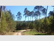 Terrain constructible à vendre à Reyersviller - Réf. 7120208