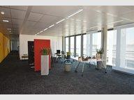Bureau à louer à Bertrange (Bourmicht) - Réf. 6486352