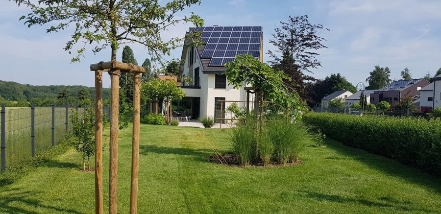townhouse for buy 5 bedrooms 350 m² hassel photo 6