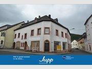 Immeuble de rapport à vendre 8 Pièces à Birresborn - Réf. 7262032