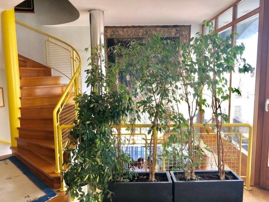 reihenhaus kaufen 5 schlafzimmer 260 m² luxembourg foto 3