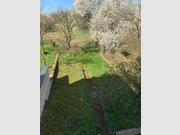 Reihenhaus zum Kauf 6 Zimmer in Luxembourg-Merl - Ref. 7075168