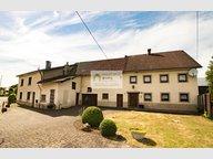 Maison à vendre 4 Chambres à Burg-Reuland - Réf. 6501744
