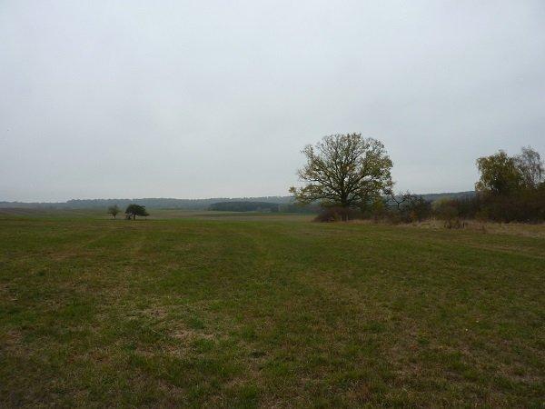 Terrain constructible à vendre à Laumesfeld