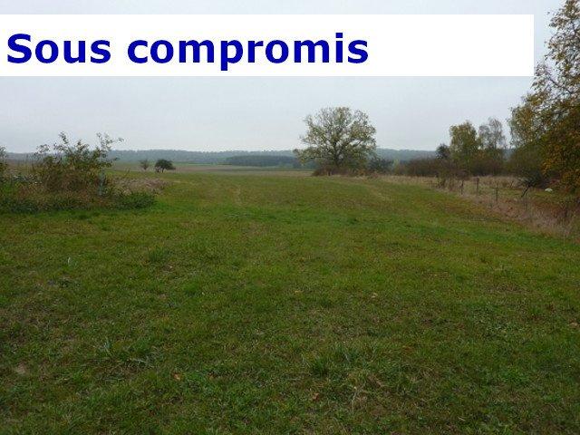 acheter terrain constructible 0 pièce 0 m² laumesfeld photo 1