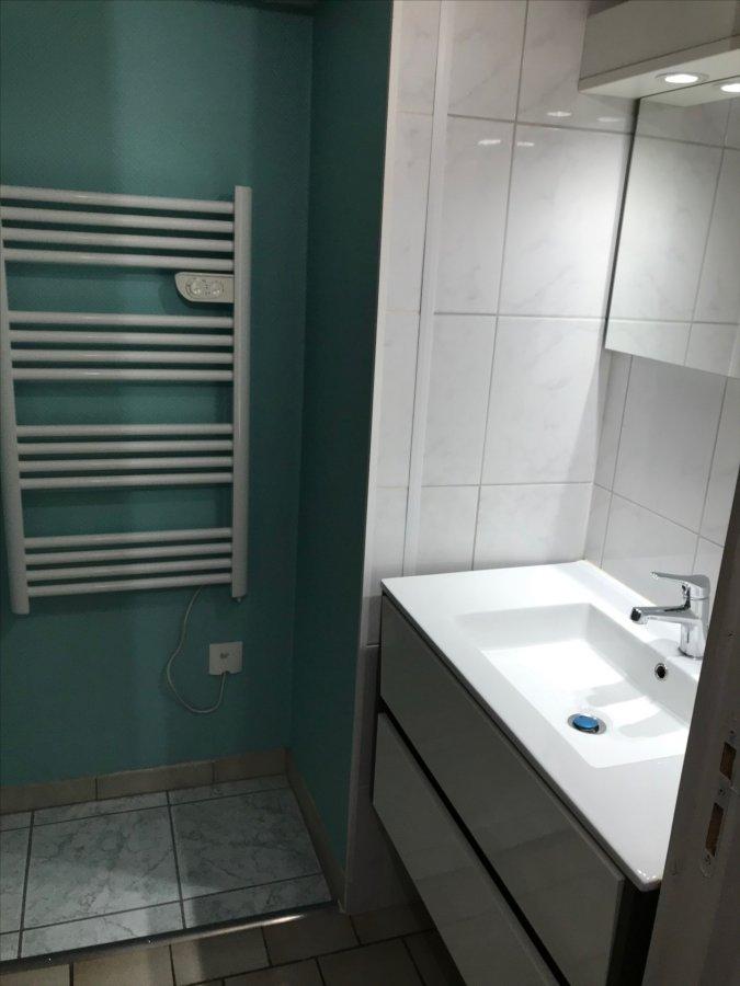 louer appartement 2 pièces 46 m² kirschnaumen photo 4