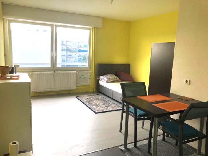 Appartement à louer F1 à Huningue