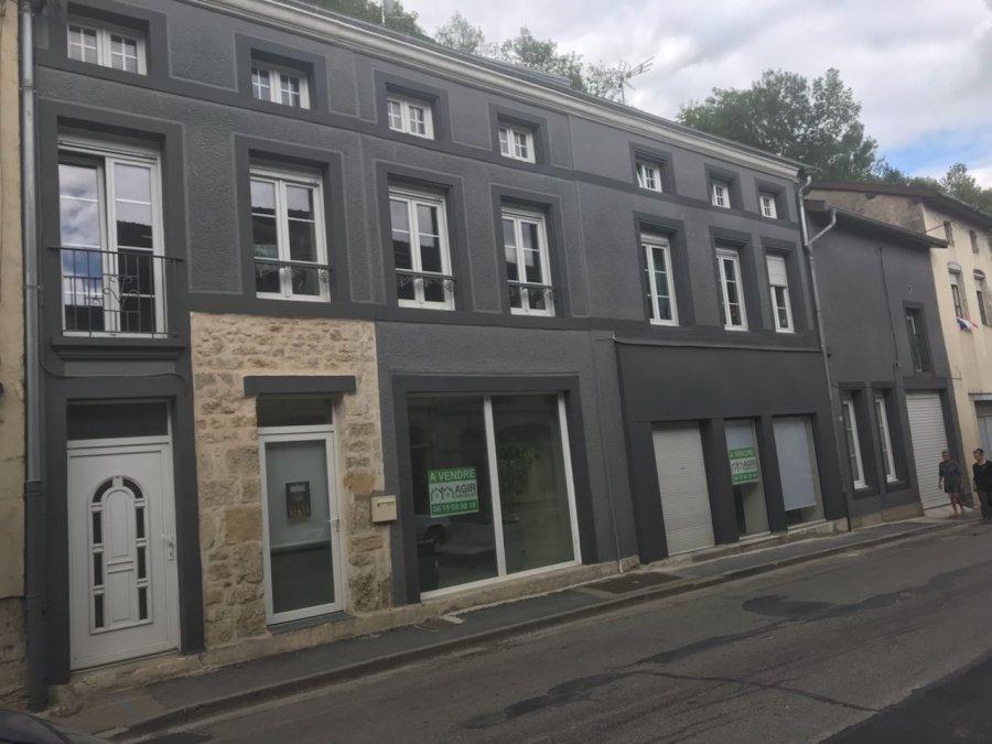 acheter maison 11 pièces 291 m² dun-sur-meuse photo 1
