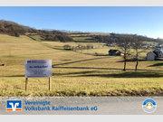 Grundstück + Haus zum Kauf in Immerath - Ref. 6624400