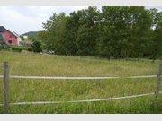 Terrain constructible à vendre à Ralingen - Réf. 6861968