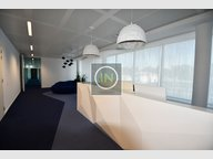 Bureau à louer à Luxembourg-Belair - Réf. 6566048