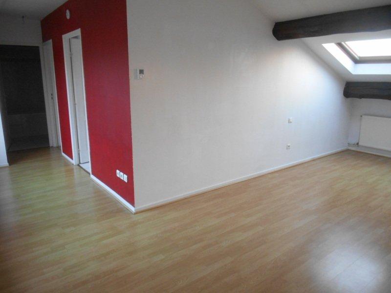 louer appartement 3 pièces 47 m² nancy photo 4
