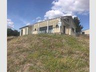 Maison à vendre F5 à Bambiderstroff - Réf. 6507168