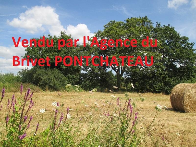 acheter terrain constructible 0 pièce 7000 m² pontchâteau photo 5