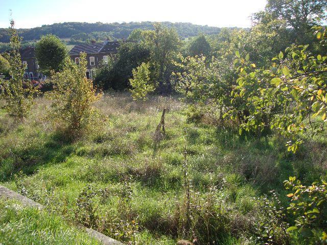 acheter terrain constructible 0 pièce 0 m² gorcy photo 2