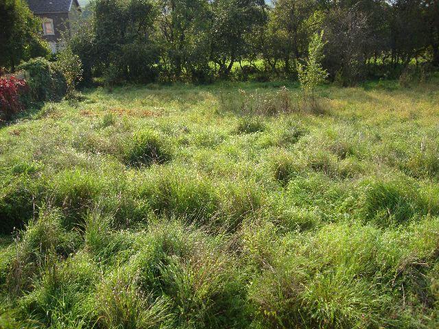 acheter terrain constructible 0 pièce 0 m² gorcy photo 1