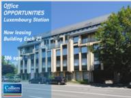 Bureau à louer à Luxembourg-Hollerich - Réf. 5857200