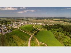 Bauland zum Kauf in Wincheringen - Ref. 6599360