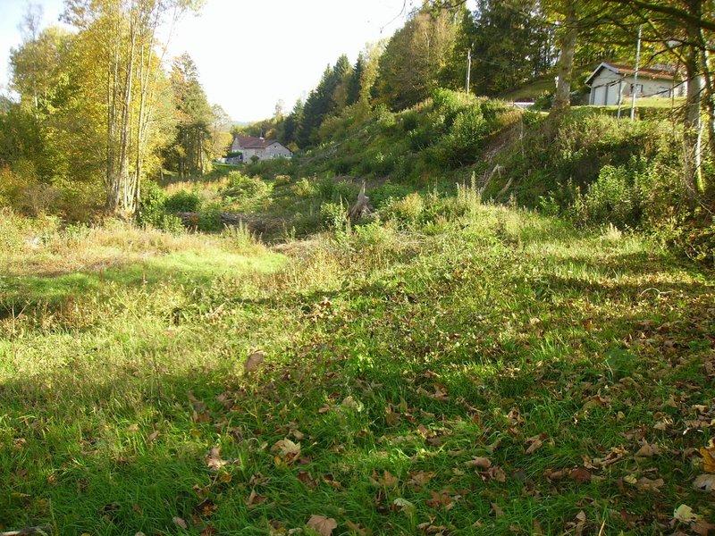acheter terrain non constructible 0 pièce 907 m² gérardmer photo 2