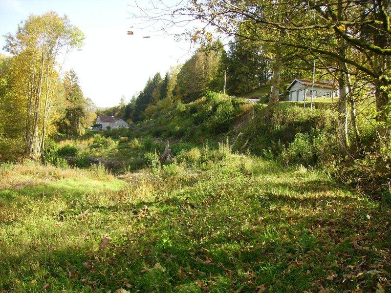 acheter terrain non constructible 0 pièce 907 m² gérardmer photo 3