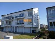Maison jumelée à louer 4 Chambres à Bertrange - Réf. 7247552