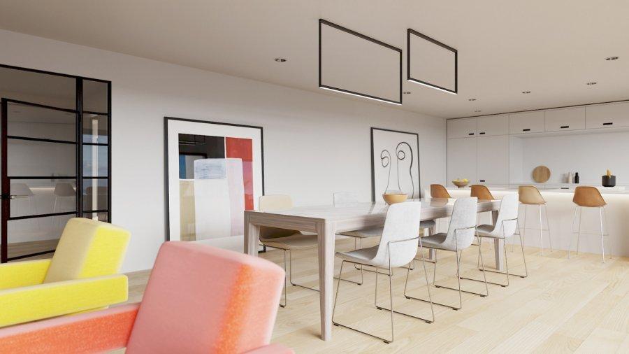 acheter penthouse 3 chambres 116.3 m² kayl photo 2
