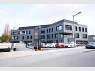 Bureau à louer 8 Chambres à Strassen - Réf. 5774528