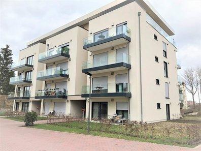 Appartement à louer 1 Chambre à Bertrange - Réf. 6261952