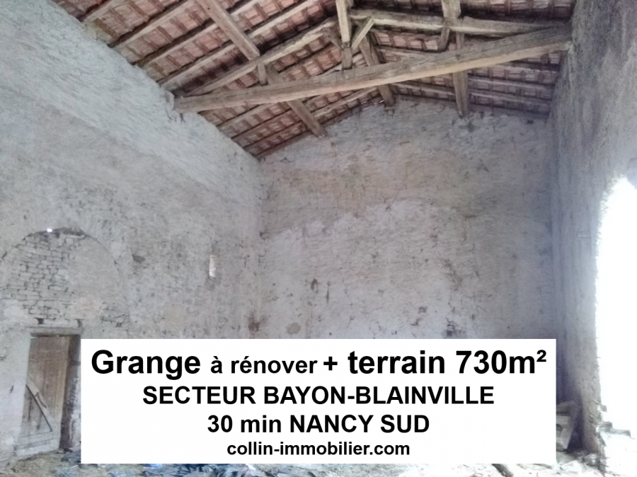 acheter maison 1 pièce 180 m² bayon photo 1