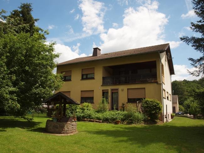 acheter maison 11 pièces 228 m² sinspelt photo 1