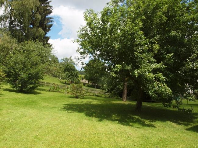 acheter maison 11 pièces 228 m² sinspelt photo 4