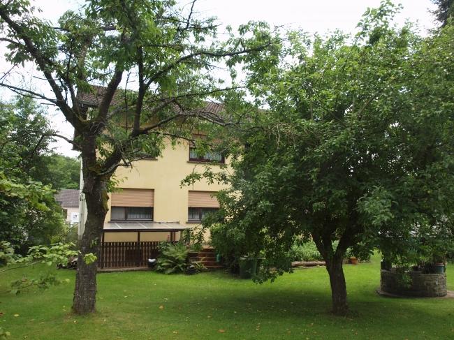 acheter maison 11 pièces 228 m² sinspelt photo 5