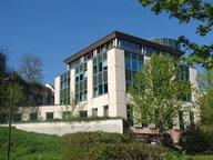 Bureau à louer à Luxembourg - Réf. 7232736