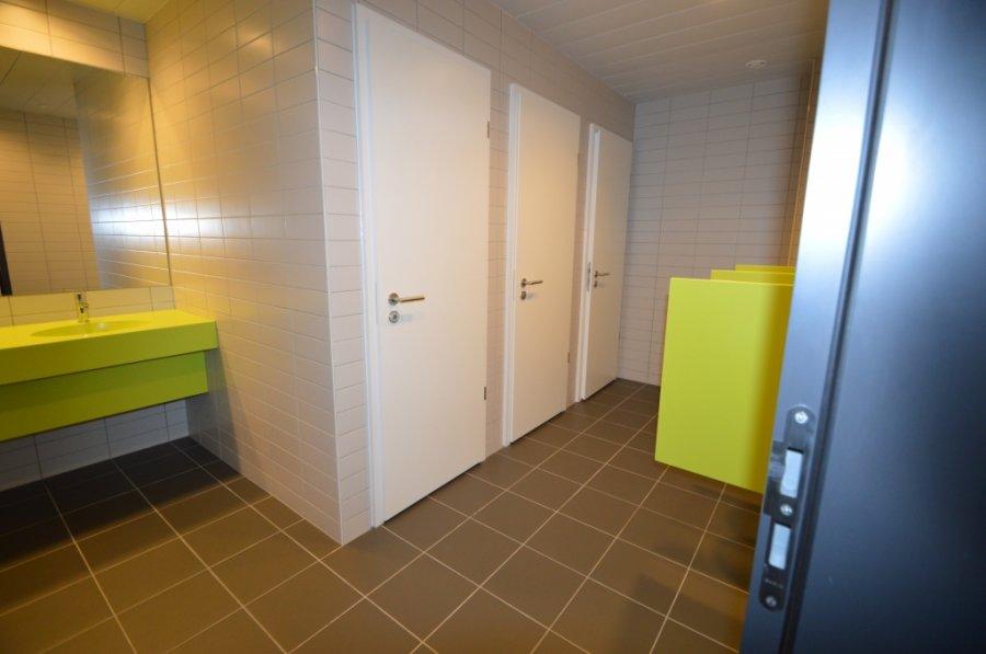 louer bureau 0 chambre 576.69 m² leudelange photo 4