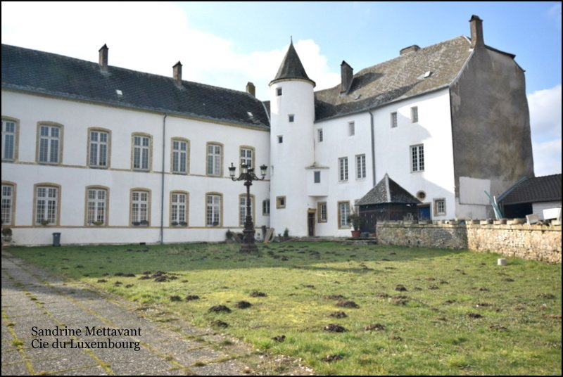 castle for buy 20 rooms 2000 m² roussy-le-village photo 1