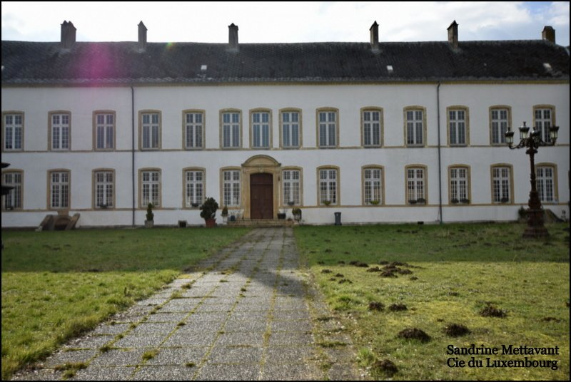 castle for buy 20 rooms 2000 m² roussy-le-village photo 3
