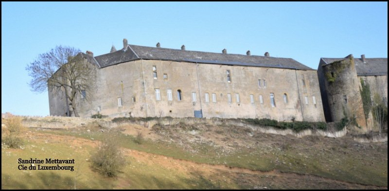 castle for buy 20 rooms 2000 m² roussy-le-village photo 7