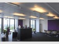 Bureau à louer à Luxembourg-Centre ville - Réf. 6008833