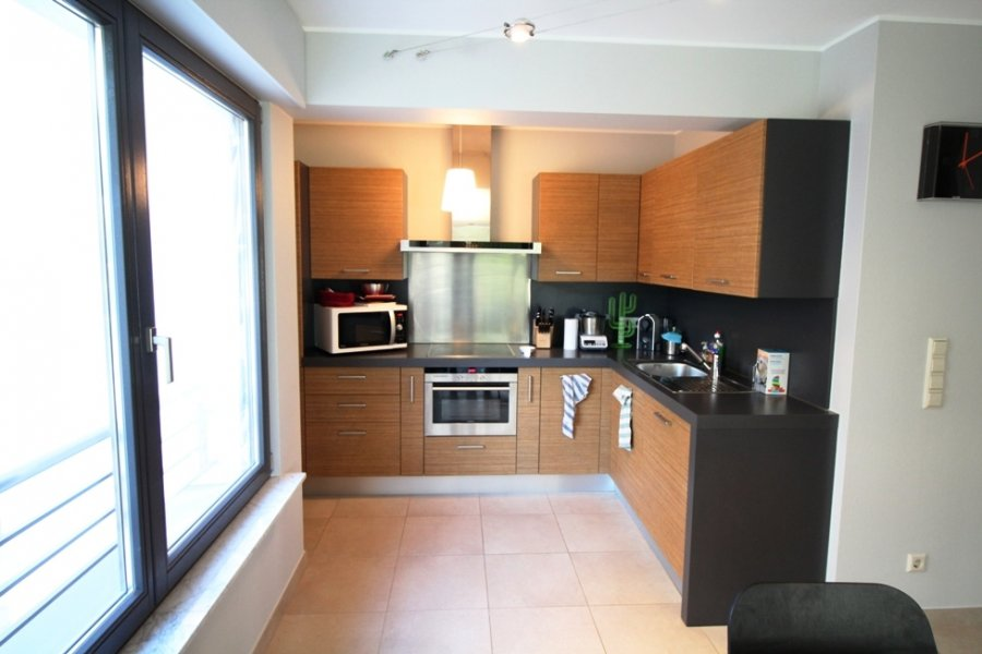 apartment for rent 1 bedroom 53.76 m² luxembourg photo 2