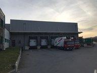 Entrepôt à louer à Munsbach - Réf. 6653185