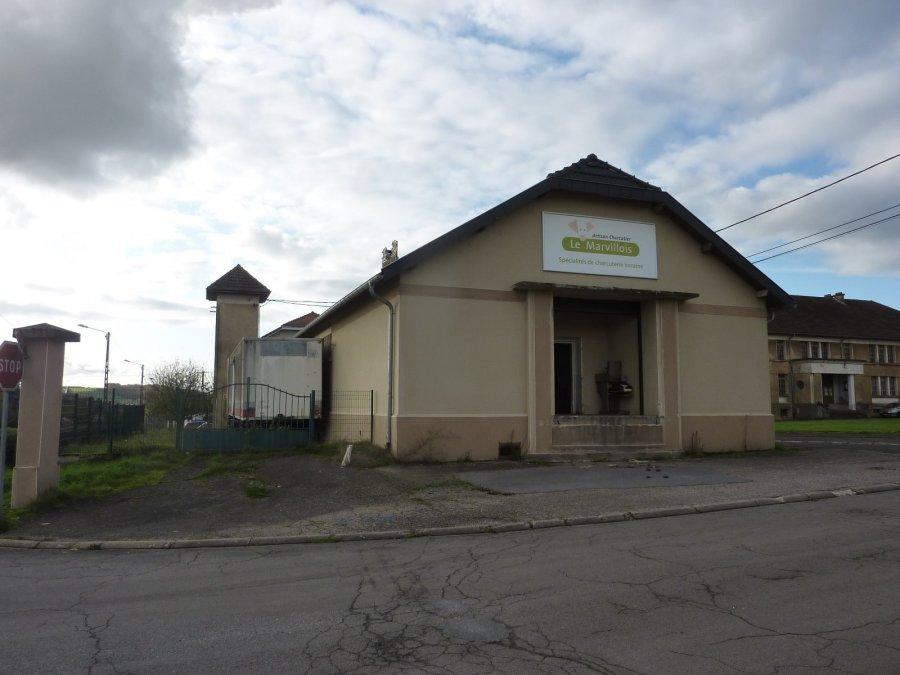 acheter immeuble de rapport 0 pièce 240 m² saint-jean-lès-longuyon photo 1