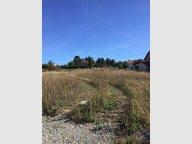 Terrain constructible à vendre à Pontoy - Réf. 6677009
