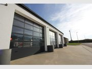 Warehouse for rent in Bitburg-Bitburg - Ref. 6059025