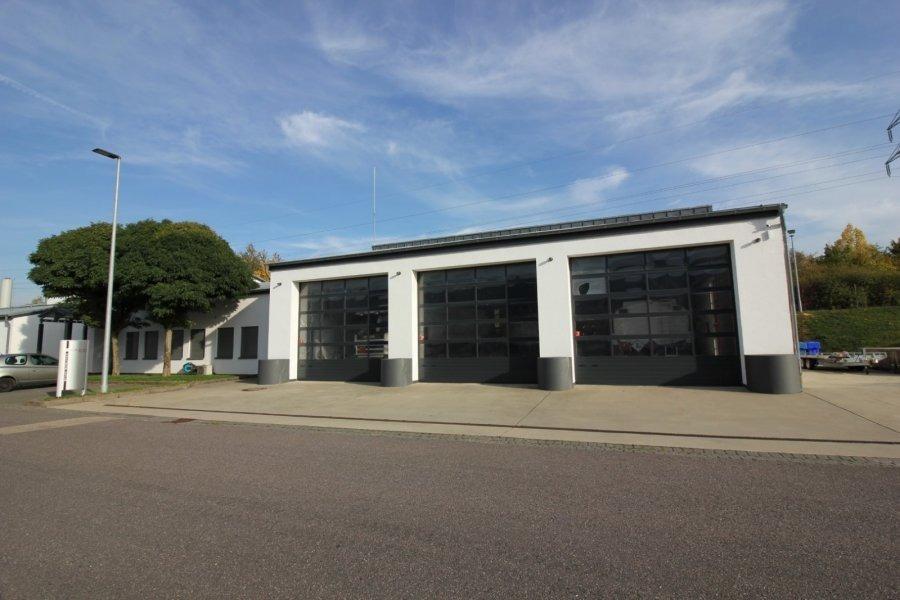 louer entrepôt 0 pièce 235 m² bitburg photo 4