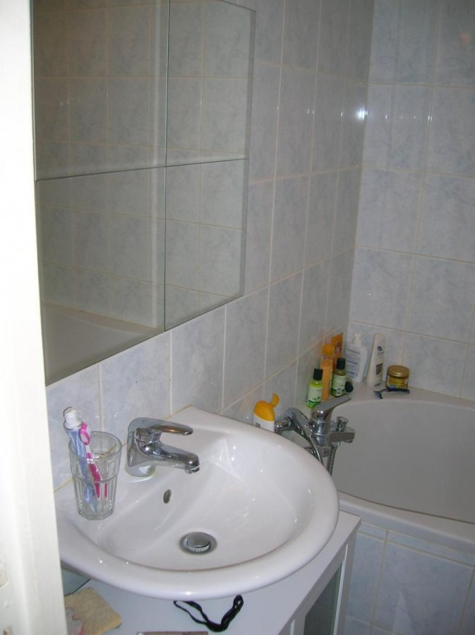 louer appartement 1 pièce 23.7 m² nancy photo 7