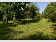Terrain constructible à vendre à Pont-à-Mousson - Réf. 6370849