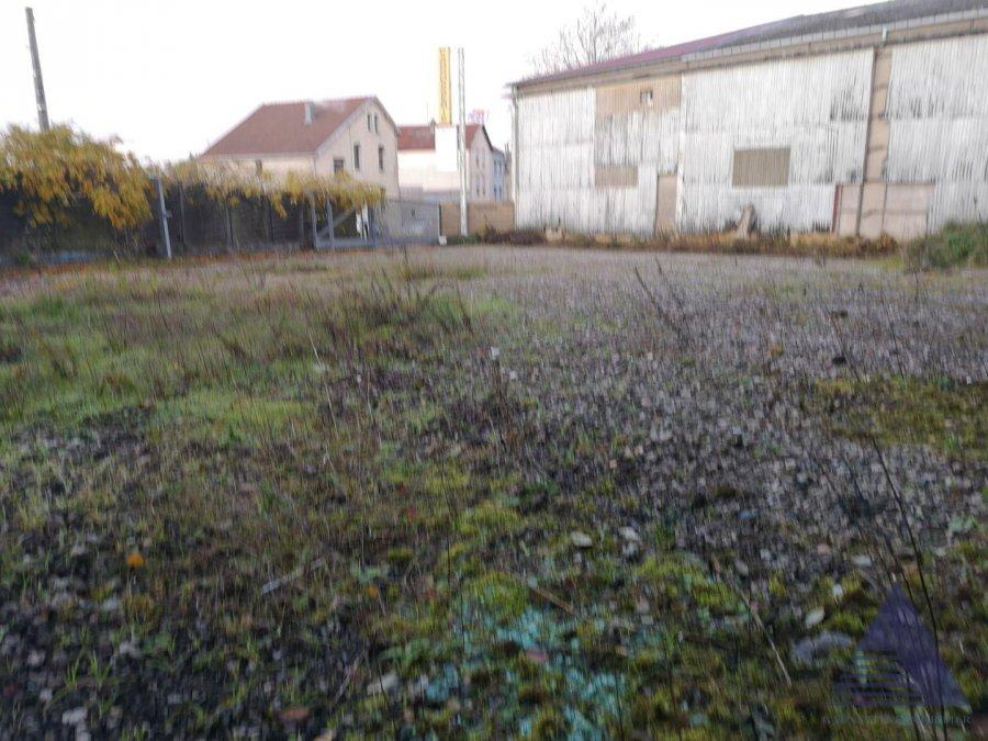 acheter entrepôt 0 pièce 700 m² villerupt photo 5