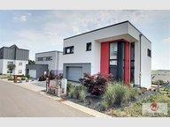 Maison individuelle à vendre 5 Chambres à Weiswampach - Réf. 5815073